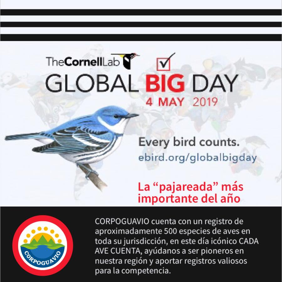 Boletín 95/19- GLOBAL BIG DAY – ‪4 Mayo de 2019